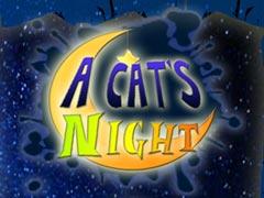 A Cat's Night